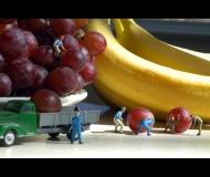 honeycutt-lorri